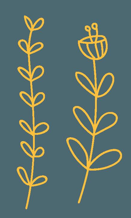 Histoires de talents - Fleurs 4